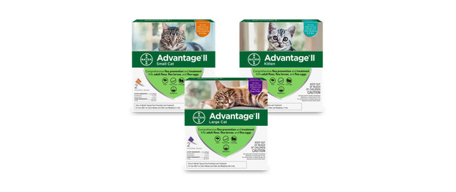 Advantage® II 2 Pack Cat coupon