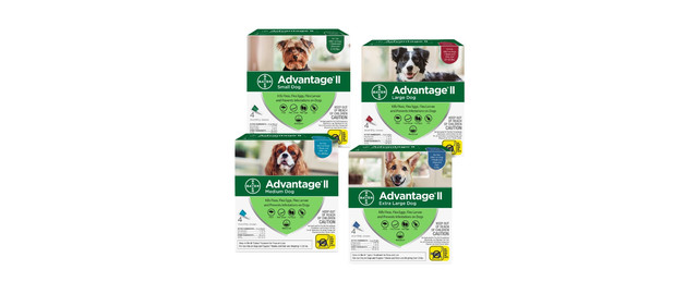 Advantage® II 4 Pack Dog coupon